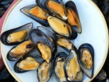 Eating mussels can make your semenradioactive!