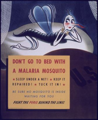 "WWII poster reminding soldiers ""Don't go to bed with a malaria mosquito"". Image via Wikimedia Commons."