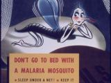 Mosquito sperm need to smell to swim